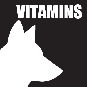 NUTRITION-DOG-VITAMINS