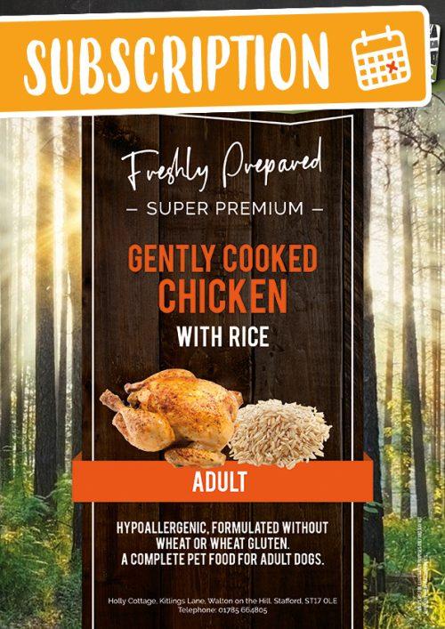 Best Chicken and Rice